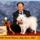 World Dog Show - Amsterdam