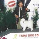 Euro Dog Show - Parigi