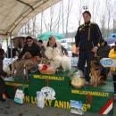 Campionato Italiano ARCI Terranova Bracciolini (AR)